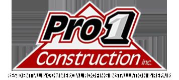 Pro 1 Construction